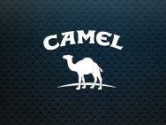 camel-preview